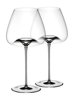 Zieher Weinglas Vision Balanced 2-er Set