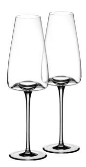 Zieher Weinglas Vision Rich 2-er Set