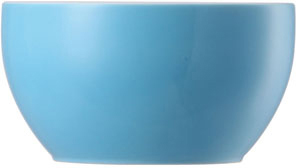 Thomas Sunny Day Waterblue Zuckerschale 6 Pers.