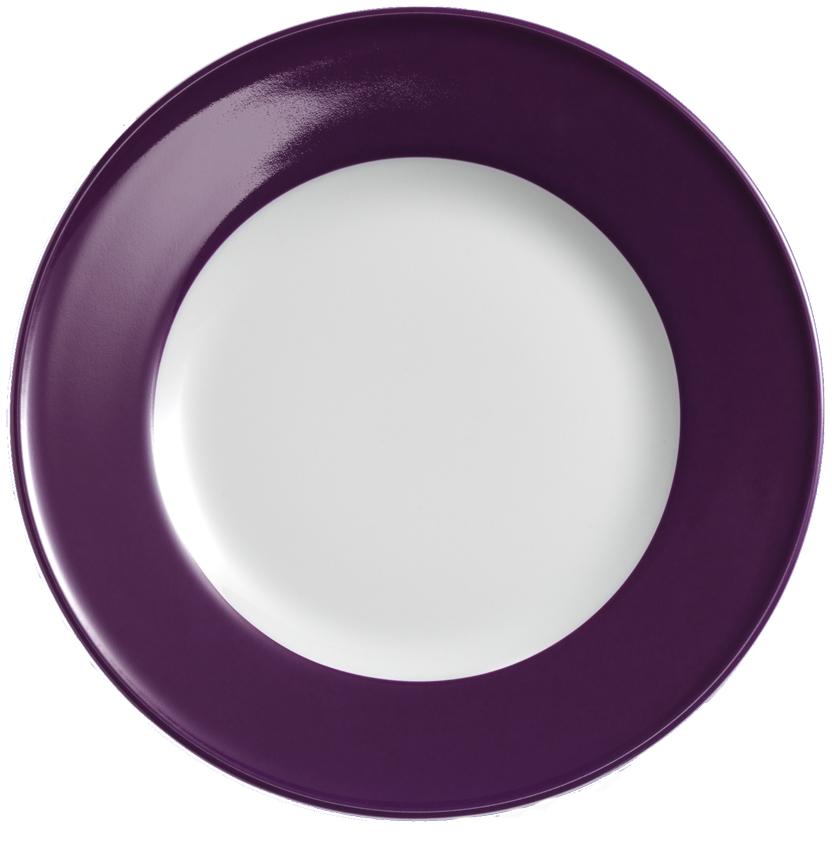 dibbern solid color pflaume teller flach 19 cm fahne 2001900025. Black Bedroom Furniture Sets. Home Design Ideas